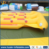 Popular Inflatable Flying Fish, Inflatable Water Toys for Sale