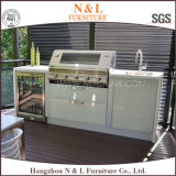 N&L BBQ Lacquer Stainless Steel Outdoor Kitchen Cabinets