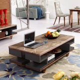 MDF Wood Surface Top Stainless Steel Leg Small Coffee Table (LC2031)