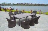 Patio Wicker Garden Furniture Round Rattan Chair Buffalo Dining Set (J717)