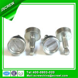 Big Flat Head 10mm Fastener Stainless Steel Specail Security Screw