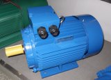 Three Phase Cast Iron Electric Motor (Y2/CDF/SDF)