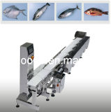 Weighing Scales and Systems for Shrimp Fish Seafoods Processing