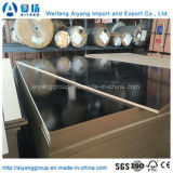 Double Faced High Gloss Melamine Veener MDF Board