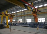 1ton Electric Chain Hoist Projects in Brizal (WBH-01001S)