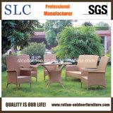 Poly Rattan Garden Furniture/ Outdoor Garden Furniture (SC-B1013)