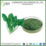 100% Natural Spinach Extract Powder/Dehydrated Spinach Powder with Factory Price