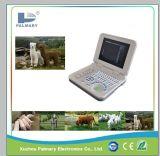 Full Digital Veterinary Notebook Ultrasound Scanner