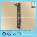China Made Massage Stainless Steel Shower Panel (BLS-3856L)