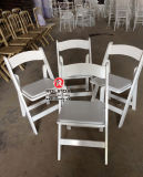 Competitive Price Outdoor Folding Plastic Chair