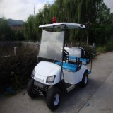 Electric Petrol Car/Golf Cart (JDGF-E501B)