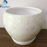 Ceramic Home Decoration Pot in Gloss White with Green Bubbles