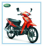 110cc/100cc/70cc/50cc Motorcycle, Moped (Wolf) , Motorbike, Motocicleta