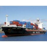 Warehouse and Logistics Service/Import & Export