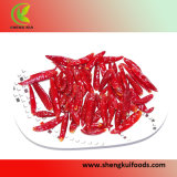 Chaotian Chili Pods