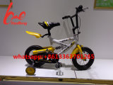 12 Inch Children Bicycle Within Damping