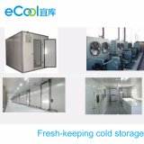 Large Size Fresh Keeping Cold Room for Vegetables and Fruits