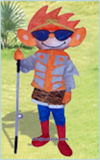 Commercial Use Inflatable Costume Cartoon with Competitive Price (A896)