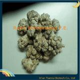 Radix Notoginseng Extract, Radix Notoginseng Powder Extract, Radix Notoginseng P. E.