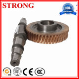 Construction Hoist Parts Output Shaft