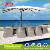 Outdoor Furniture, Garden Furniture (DH-9721)