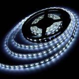 16.4 FT Cool White 5050 SMD LED Flex Strip Light