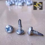 Galvanized Pan Framing Head Self-Drilling Screw