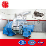 Condensing Steam Turbine for Power Plant Project