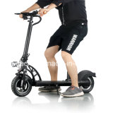 10 Inch Hot Sale Ecorider High Power Folding Electric Scooter