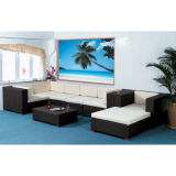 Hot Selling Wicker Sofa Set (WS-06007)