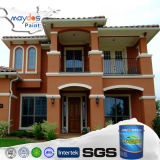 Maydos Durable Wall Outdoor Paint