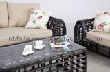 Outdoor Garden Rattan Furniture (FT-1140)