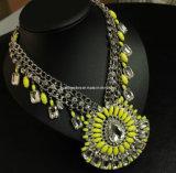 Shourouk Style Fashion Necklace/Fashion Jewelry (XJW13169)