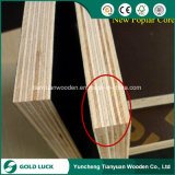 1220X2440mm Poplar Core Anti-Slip Black/ Brown Film Faced Plywood