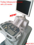 15inch LCD Monitor - Trolley Digital Ultrasonic Diagnostic Equipment / Ultrasound Machine (CE e ISO) (XK / 21353)