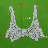 Embroidery Lace Collar for Cloth Decoration (cn20)