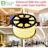 60LEDs/M 220V 5050 Three Core Flexible LED Strip Light Waterproof