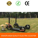 High Speed Big Powered 2000W Electric Scooter