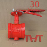 Grooved Butterfly Valve/Control Valve/