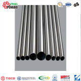 Lower Price and Customized Stainless Steel Pipe in Pengbo