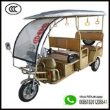 High Quality E Rickshaw Electric Tricycle 3 Wheeler Electric Auto Bajaj for Kokata, India From Qiangsheng