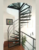 Spiral Stairs in Glass/Glass Spiral Staircase