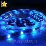 3528 and 5050 LED Strip Light