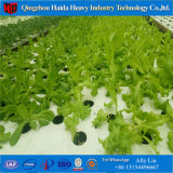 Greenhouse Hydroponics Systems Table for Sales