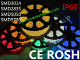 Ce Certificate 220V SMD2835/5050 LED Strip Light