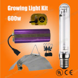Hydroponic Growing Light Lamp 600W Mh HPS