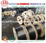 Spring Steel Wire (China real high quality factory)