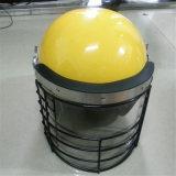Supplier/Wholesaler ABS/PC Anti-Riot Helmet