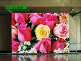 Indoor Full Color LED Display (LEDSOLUTION P6)
