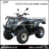 200cc/250cc Jianshe Farm ATV Quad Bike with Water Cooled Engine